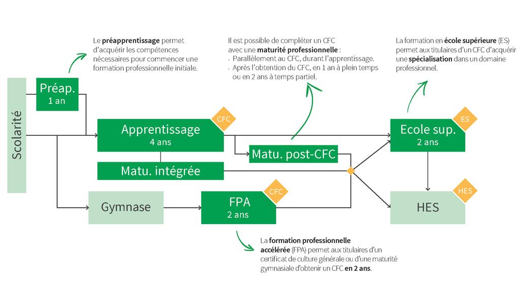 CPNV - Schéma de formation